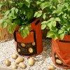 Выращивание картофеля в мешках: технология, посадка картошки в мешки и уход.